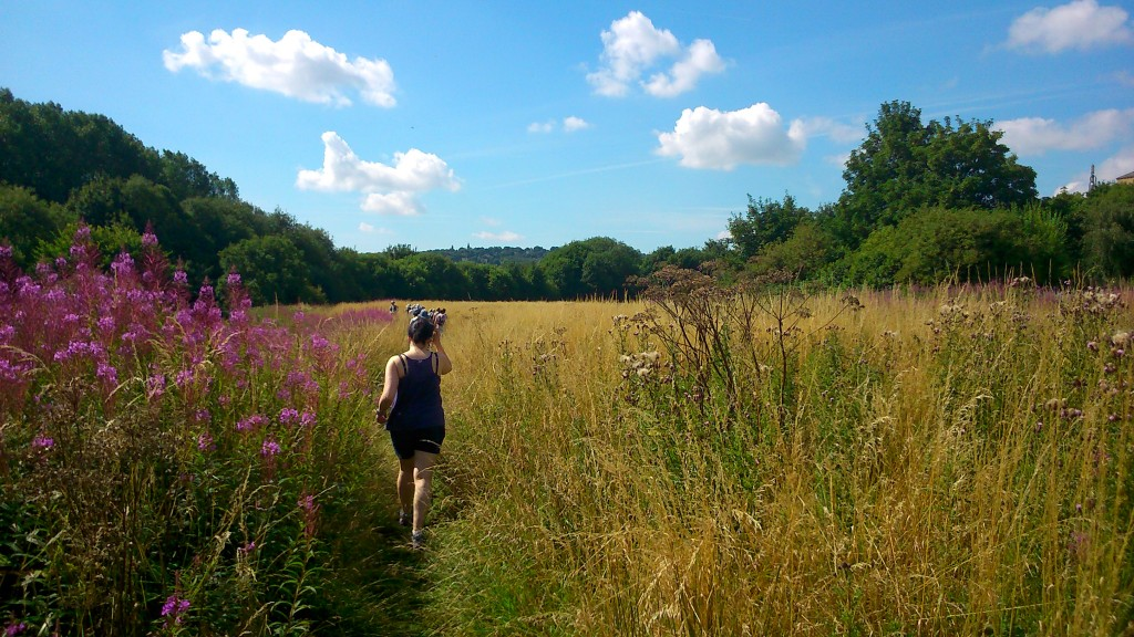 Heading out across the savannah... (aka the meadow between Bradford Beck and Shipley station, currently threatened by Morrisons)