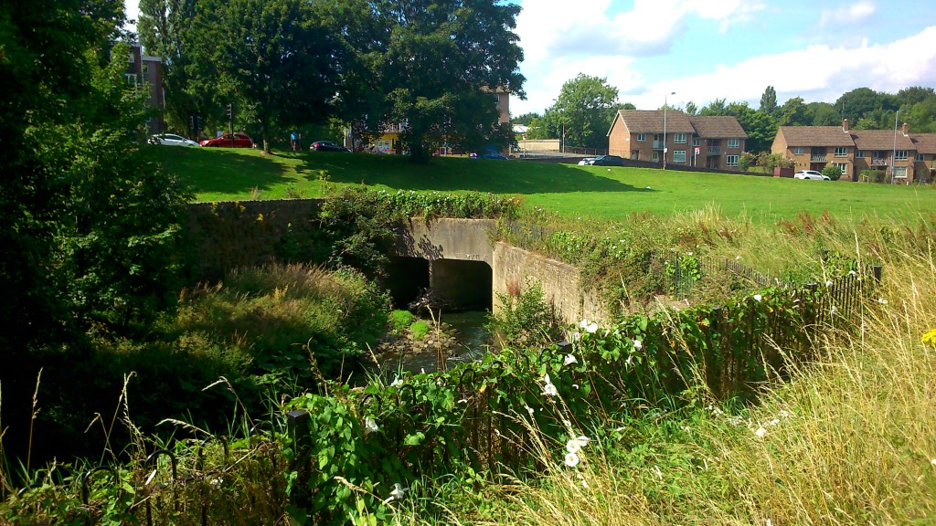 "Tracking the Beck upstream along the greenway on Canal Road... Barney Lerner, chairman of the Friends of Bradford's Becks, told us about plans to remove this ""box culvert"" that the river currently runs through - if the money can be found!"